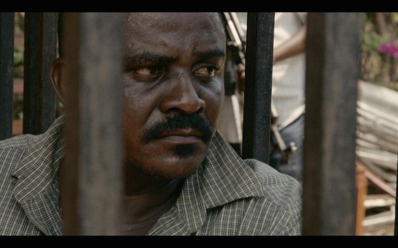 Shetani-behind-bars-in-Tanzania-Credit-Terra-Mater-Factual-Studios-2