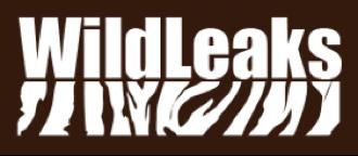 Wildleaks logo